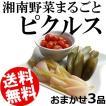 ピクルス 300〜600g×3品 おまかせ 神奈川県なんどき牧場 湘南野菜 鎌倉野菜 送料無料 贈答品 お取り寄せ