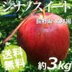 りんご 3kg 9〜12玉 シナノスイート 長野県名月園 送料無料 贈答品 お取り寄せ