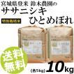 お米 10kg 白米 ひとめぼれ ササニシキ 宮城県登米産 精白米 特別栽培米 送料無料 贈答品 お取り寄せ