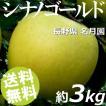 りんご 3kg 9〜12玉 シナノゴールド 長野県名月園 送料無料 贈答品 お取り寄せ