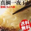 一夜干し 真鯛 8片 約560g 愛媛県 宇和島市 こもぶち 焼き魚 送料無料 贈答品 お取り寄せ
