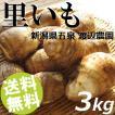 里芋 3kg LL〜L玉 里いも さといも 新潟県 五泉市 渡辺農園 送料無料 お歳暮 贈答品 お取り寄せ
