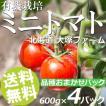 有機栽培ミニトマト おまかせセット 600g×4パック 北海道大塚ファーム 送料無料 贈答品 お取り寄せ ※ご予約商品※7月1日頃から順次お届け※