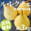 ルレクチェ 3kg 8〜10個 新潟県加茂やまげん果樹園 送料無料 贈答品 お取り寄せ