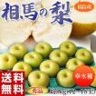 福島県産「相馬の梨(幸水)」 秀品 12〜18玉 約5kg ※送料無料