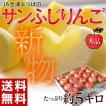 りんご サンふじ 送料無料 約5kg 14〜23玉 秀品  常温 リンゴ JA会津よつば