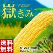 青森県産 『嶽きみ』 M~2Lサイズ ...