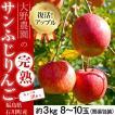 りんご 林檎 リンゴ 訳あり 大野農...