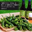 「遠野パドロン 500g」 & 地ビール...