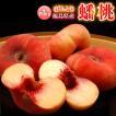 桃 果物 詰め合わせ 福島県産 蟠桃(ばんとう) 5〜10玉 約1kg 送料無料