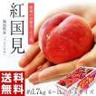 お中元 御中元 桃 もも 果物 福島県産 伊達の桃 紅国見 6〜11玉 約1.7kg 送料無料
