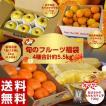 送料無料 旬のフルーツ福袋 4種 合...