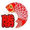 広島カープ 刺繍ワッペン 鯉のぼり レッド (KN-0001) カープユニフォーム CARP 広島東洋カープ カープ女子 応援歌 刺繍 メール便 アイロン