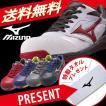 安全靴  ミズノ安全靴 作業靴 送料無料 ソックスプレゼント ポイント5倍 ミズノ MIZUNO C1GA1700 プロテクティブスニーカー