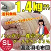 ハンガリーホワイトグースダウン93%コーンキルト【羽毛掛け布団 (シングル)(日本製)】