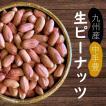 国産 未調理なま 落花生(ナカテユタカ) 500g