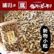 新物 塩ゆで落花生 【小粒】 500g 大村産 ゆでピープロジェクト