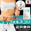 フォースコリー 国産 日本製 ダイエット サプリメント 安全 痩せ 効果 体脂肪 フォルスコリ 健康 4ヶ月 120日分 送料無料 ポイント消化