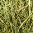 アメリカンチモシー2番刈り牧草 シングルプレス 500g × 2個
