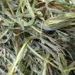 カナダチモシー 2番刈り牧草 ダブルプレス 500g × 2