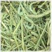 アメリカンチモシー1番刈り ダブルプレス牧草 500g × 2個