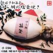 愛媛 ( 鯛の塩釜焼 ) 魚体約30cm0.5kg お祝 お食い初め 慶事 送料無料 浜から直送 宇和海の幸問屋