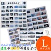 フォトアルバム 万丈 写真展示用ホルダー L判 A210-005
