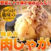 ポイント消化 ゴロっとじゃがいも♪かつお風味の優しい味付け!!味染み肉じゃが600g(200g×3袋)  送料無料 セール