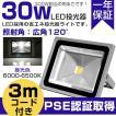 「1年保証」 LED 投光器 30W 300W相当 昼光色 IP65 6000-6500K 3mコード 防塵防水 看板灯 集魚灯 作業灯 屋内外