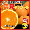 清見オレンジ 清見タンゴール 清見 清見みかん みかん 約2kg 訳あり キズ多め 送料無料