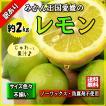 レモン 訳あり 愛媛県産 檸檬 ノーワックス 防腐剤不使用 不揃い 2kg 送料無料 セール