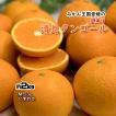 清見オレンジ 清見タンゴール 清見 清見みかん みかん 約2kg 家庭用 送料無料