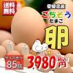 たまご 愛媛県 餌と生育にこだわった ごちそう卵 まとめ買い 80個 + 破損保障 5個 送料無料