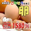 たまご 愛媛県 餌と生育にこだわった ごちそう卵 まとめ買い 20個 送料無料