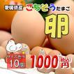 たまご 愛媛県 餌と生育にこだわった ごちそう卵 まとめ買い 10個 送料無料