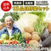 お買い得 野菜 野菜セット 無農薬 低農薬 13品目 こだ...