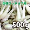 野菜・種/苗 国産ラッキョウ・生もの種 量り売り500g