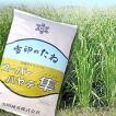 スーパーハヤテ 隼・エンバク(エン麦)1kg 緑肥/飼料/牧草作物/種