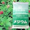 赤クローバ メジウム 500g 緑肥/飼料/牧草作物/種