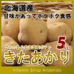 じゃがいも 北海道産きたあかり5kg ジャガイモ いも キタアカリ ニセコ 5キロ 送料無料
