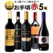 ワイン ワインセット おまけ付 期間限定 金賞受賞入り お手頃ワイン 赤ワイン 5本セット B 辛口 送料無料