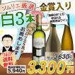 ワイン ワインセット ソムリエおすすめ バラエティ白ワイン3本セット 送料無料 ソムリエ厳選