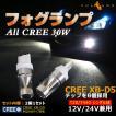 ALL CREE 30W LEDライト T20/7440 バック シングル球 LEDバルブ CREE XB-D5 ホワイト 白 2個 6000K 純正交換用 デイライト 12V24V兼用