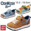 キッズシューズ オシュコシュ OSHKOSH 子供靴 運動靴  女の子 男の子/ 15cm-19cm OSK-C387