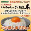 いっちゃんのかけぼし米 20kg 鹿児島県産ヒノヒカリ100% 棚田かけ干米