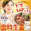 金時生姜 サプリメント 60粒