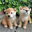 犬の置物 秋田犬2匹セット 子犬 N13392 いぬ イヌ 動物  オーナメント ガーデン 犬 置物 オーナメント ガーデニング 庭 オブジェ 陶器
