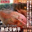 産地直送 安納芋 さつまいも 10kg S〜Lサイズ 鹿児島県種子島 訳あり 家庭用 サイズ混合 蜜芋 減農薬栽培