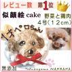 犬用 似顔絵ドッグケーキ を立体に! 1頭描き 野菜と大山鳥 生地 4号 誕生日に無添加で安心人気 バースデー 名前入れ WANBANAワンバナ 6480円以上 送料無料