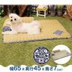 ペットべッド 夏用 犬ベッド 犬用ベッド ござわん 枕つき 朝涼み ペットべッド 和風 夏用 犬ベッド 犬用ベッド ドギーマン (D)